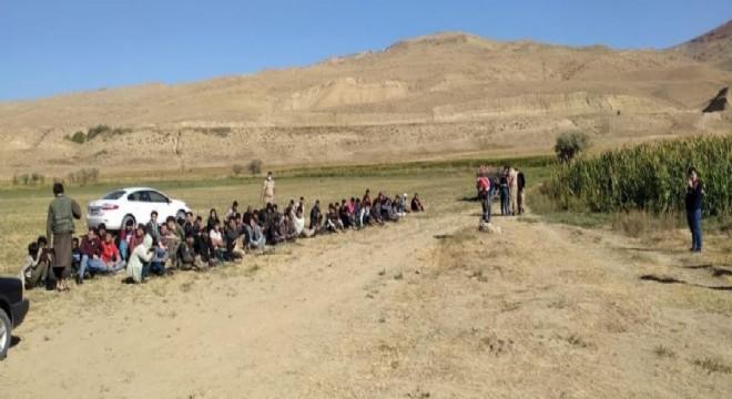 71 kaçak göçmen ile 2 organizatör yakalandı