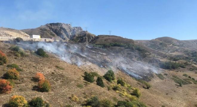 Kop Dağı'ndaki örtü yangını kontrol altına alındı